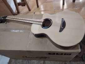 Gitar akustik elektrik new apx maple