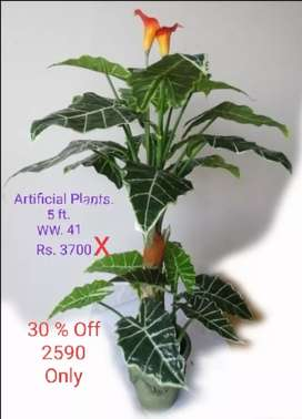 artificial plants n many more
