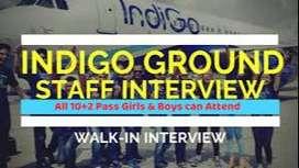 Urgent vacancy 30 airport jobs