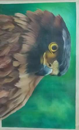 EAGLE CANVAS OIL PANITING