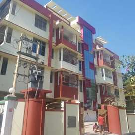 Newly furnished 3 bhk flat