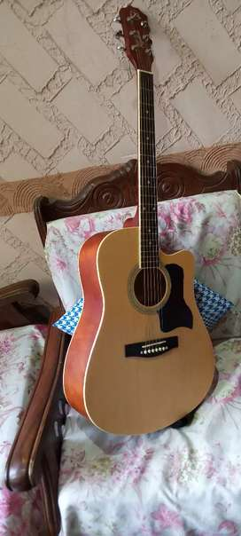 Semi acoustic guitar is used only 6 months
