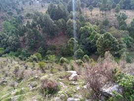 105 canal area for sale in Abbottabad