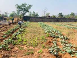 Agricultural land and farm house sale in near mumbai at just low price