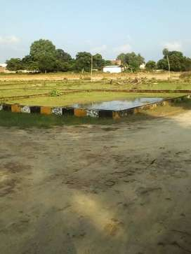 Plot For Sale in Gomti Nager Extension Lucknow