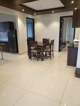 Brand New Flat In Purva Palm Beach