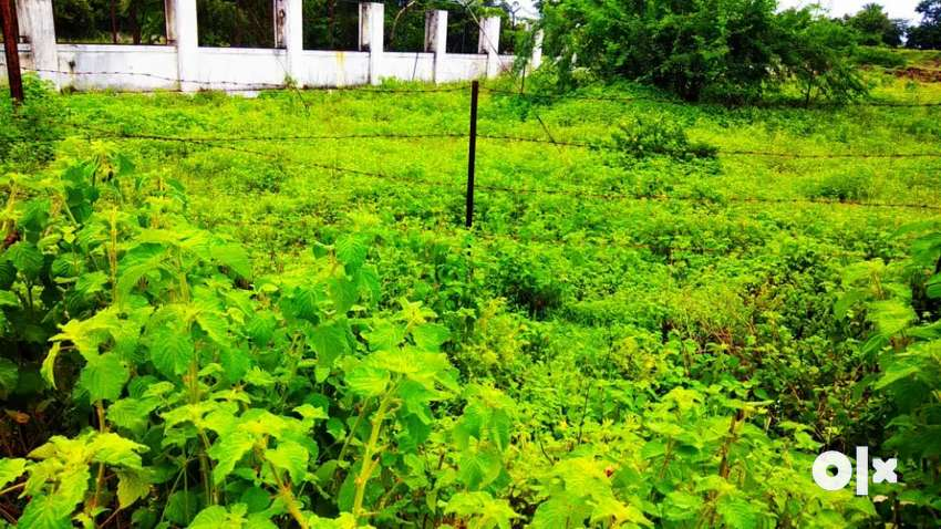 Road touch plot for sale 40x40 0