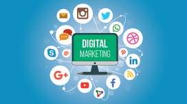 Digital Marketing Expert Required