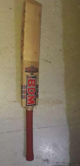 BDM Kashmir willow