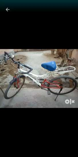 Gang bicycle in full condition