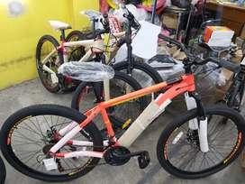 Sepeda MTB FASTRON F260 DAL 21 Speed Bisa Cash / Kredit