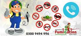 Deemak(termite), pests and insects control services.