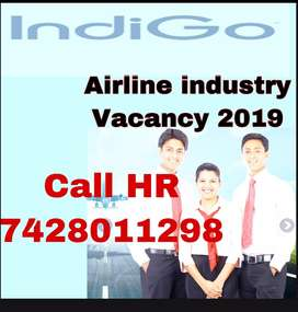 Airline job 2019 in indigo for all over punjab