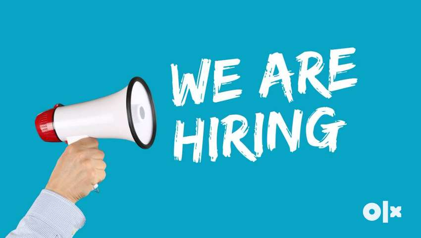 wanted immed -software professional