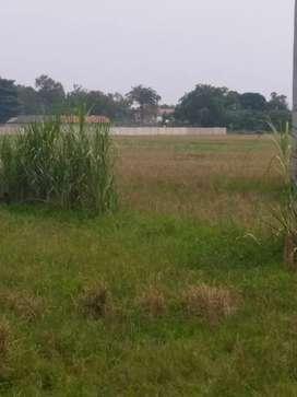 Dijual lahan kosong di Pinggir jalan Raya Lingkar tanjungpura karawang