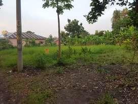 Dijual Tanah Patumbak Gg Masjid