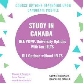 Study Canada without IELTS (DLI/PTWP options available)