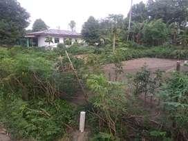 dijual tanah kaplingan di jalan rambutan 3/ jalan Nurul amal