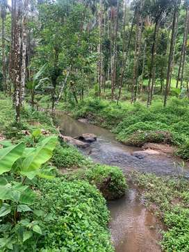 3.5 acers of Farm land available for sale in mukkali, attapadi
