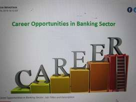 job in banking and financial sector boys and girl both required