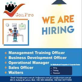 Waiter. Salesman.Acct. Operation manager. MTO. BDO. Civil Engineer.