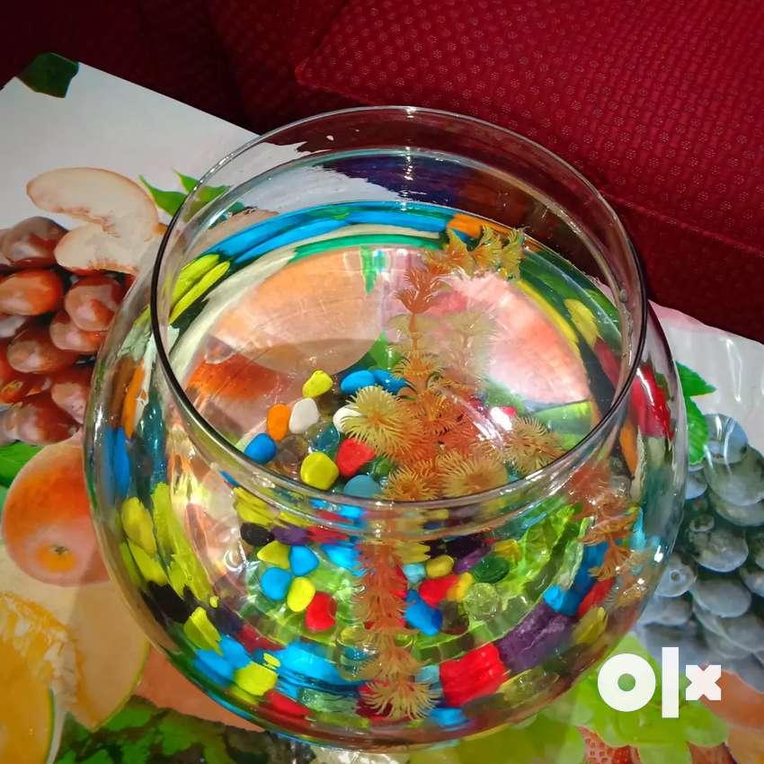 Fish bowl aquarium+colorful pebbles+tree 0