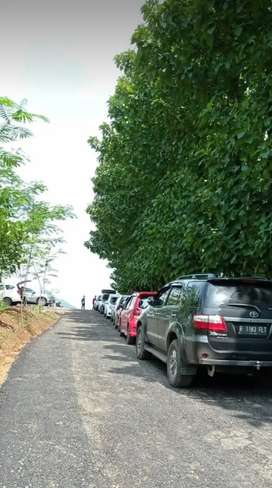 Tanah kavling serbaguna pinggir jalan raya transyogi