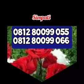 Nomor cantik tell Simpati