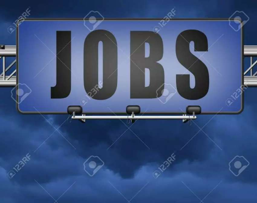 Staff required for Office management 0