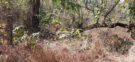 Settlement plot at Revora North Goa 37lacs
