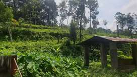 Protta mukku to valakzli road side old house well