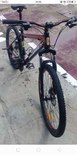 Sepeda Phoenix second