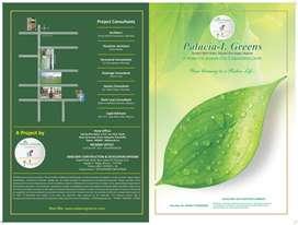 2bhk flat palcia I greens samuday in Mysore city
