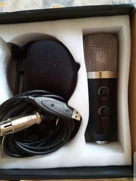 Studio Recording Microphone.
