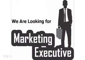 Marketing & Promotion Expert