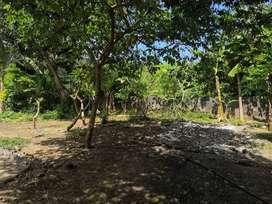 #059 Dijual Tanah Lokasi : JL. Siulan, Gg. Sekar Gunung, Denpasar Timu