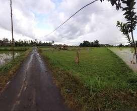 Tanah dekat bypass BIL Lombok Tengah