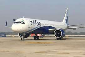Indigo airlines manager and supervisor