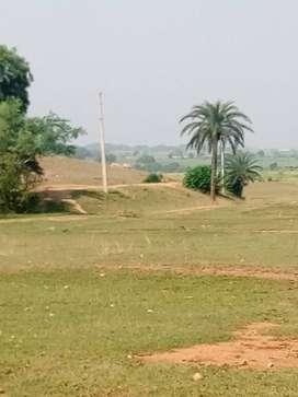 HATA. POTKA. 10 Bigha 6 Lakh per Bigha. CNT Free Land For sale lowCost