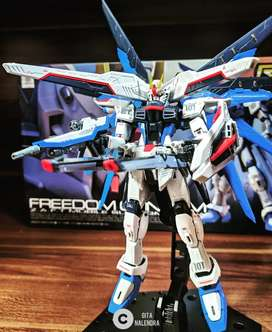 Gundam Freedom, RG