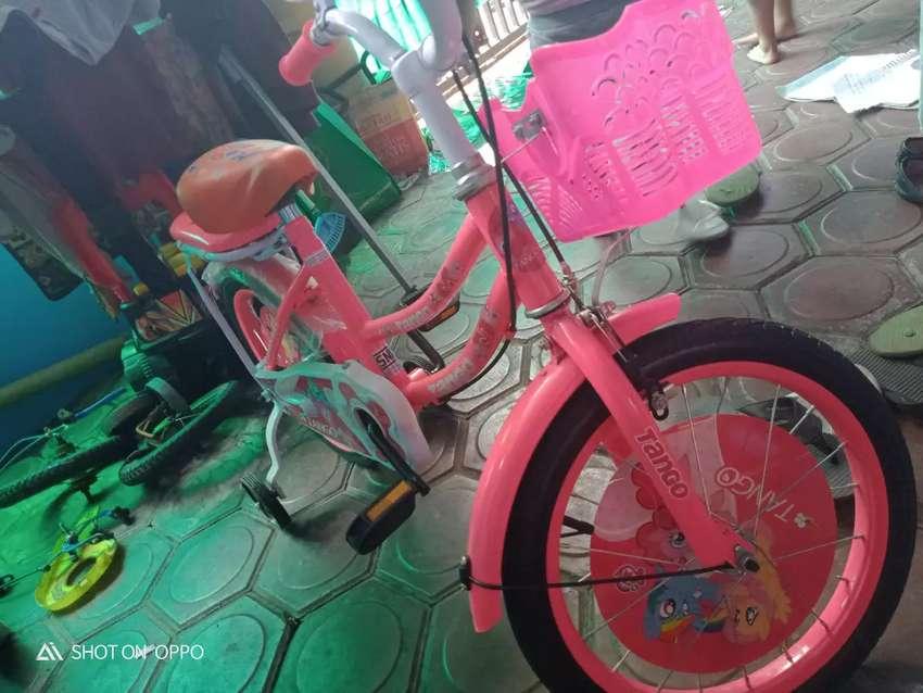 Sepeda anak little pony 0