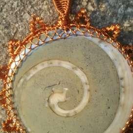 fosil keong diujung naga