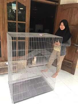 Silakan Kakak silkaan kandang kucing nyaa baru