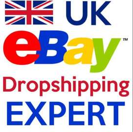 E Commerce eBay and Amazon, IT and Networking