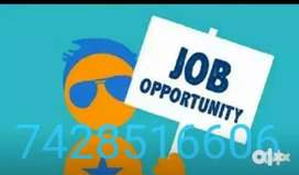 Freshers or experience person can join us for data entry work