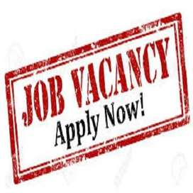 Govt. Registered company hiring for full time workers.