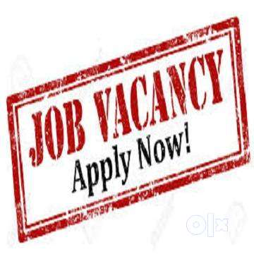 Govt. Registered company hiring for full time workers. 0