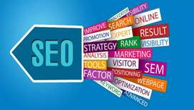 Required SEO expert for full time