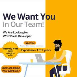 We are looking wordpress developer for remotely work