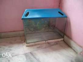 I CELL MY AQUARIUM & FISH+LIGHT+STONE+AIR PUMP
